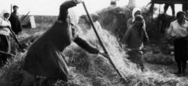 La Reforma Agraria en Andalucia