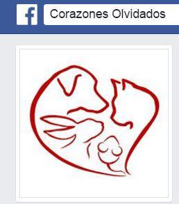 Asociación corazones olvidados Granada