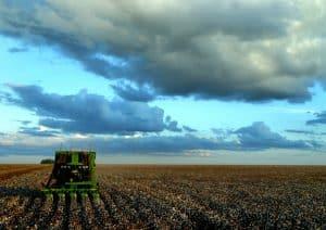que es El biodiesel mata