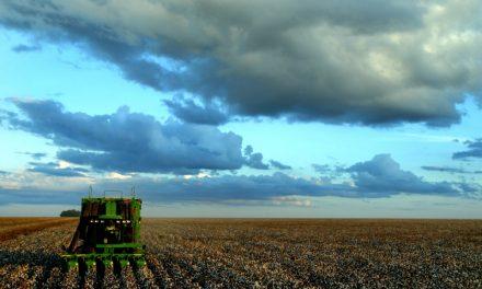 ¿Cómo se obtiene el Biodiesel?