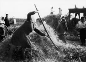 La Reforma Agraria en Andalucía